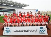 18 April 2019; Bruff GAA, Co. Limerick, during the Littlewoods Ireland Go Games Provincial Days in Croke Park. This year over 6,000 boys and girls aged between six and twelve represented their clubs in a series of mini blitzes and – just like their heroes – got to play in Croke Park, Dublin. Photo by Seb Daly/Sportsfile