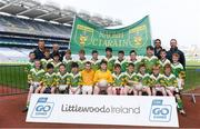 19 April 2019; The St Kieran's, Co Limerick, team at the Littlewoods Ireland Go Games Provincial Days in Croke Park. This year over 6,000 boys and girls aged between six and twelve represented their clubs in a series of mini blitzes and – just like their heroes – got to play in Croke Park, Dublin.  Photo by Piaras Ó Mídheach/Sportsfile