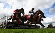 1 May 2019; Runners and riders including Goaheadmakemyday, with Cathal Landers up, right, on their first time round during the The Adare Manor Opportunity Series Final Handicap Hurdle during the Punchestown Festival Gold Cup Day at Punchestown Racecourse in Naas, Kildare. Photo by David Fitzgerald/Sportsfile