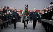 2 May 2019; Grand National winning horse Tiger Roll is paraded prior to the Ryanair Novice Steeplechase at Punchestown Racecourse in Naas, Kildare. Photo by David Fitzgerald/Sportsfile