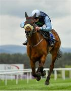 3 May 2019; Flirting Lesa, with Niall Redmond up, on their way to winning the KFM Hunters Steeplechase at Punchestown Racecourse in Naas, Kildare. Photo by Seb Daly/Sportsfile