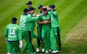 3 May 2019; Josh Little of Ireland, centre, celebrates with team mates after taking the wicket of Eoin Morgan during the One Day International between Ireland and England at Malahide Cricket Ground in Dublin. Photo by Sam Barnes/Sportsfile