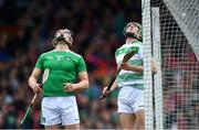 19 May 2019; Limerick players Mike Casey, left, and Nickie Quaid during the Munster GAA Hurling Senior Championship Round 2 match between Limerick and Cork at the LIT Gaelic Grounds in Limerick. Photo by Piaras Ó Mídheach/Sportsfile