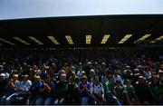 2 June 2019; Supporters during the Munster GAA Hurling Senior Championship Round 3 match between Waterford and Limerick at Walsh Park in Waterford. Photo by Ramsey Cardy/Sportsfile