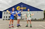 6 June 2019; Eamonn Dillon, centre, Naomh Fionnbarra and Dublin with Collette Dormer, Paulstown/Gorebridge and Kilkenny and Tommy Walsh, Tullaroan and Kilkenny, pictured at the announcement that Chadwicks are the new sponsor of the Leinster GAA Chadwicks Club Hurling League were Collette Dormer, Paulstown/Gorebridge and Kilkenny, Tommy Walsh, Tullaroan and Kilkenny and Eamonn Dillon, Naomh Fionnbarra and Dublin at Chadwicks Lucan, Laraghcon, Lucan, Co. Dublin. Chadwicks today launched the Chadwicks Kit-Out competition to celebrate the sponsorship, offering clubs in Leinster the chance to win over €20,000 worth of product to improve their clubhouse facilities. To enter go to chadwicks.ie Photo by Matt Browne/Sportsfile