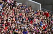 8 June 2019; Cork manager John Meyler during the Munster GAA Hurling Senior Championship Round 4 match between Cork and Waterford at Páirc Uí Chaoimh in Cork. Photo by Piaras Ó Mídheach/Sportsfile