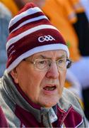 9 June 2019; Galway supporter Liam Forde watches during the Leinster GAA Hurling Senior Championship Round 4 match between Kilkenny and Galway at Nowlan Park in Kilkenny. Photo by Ray McManus/Sportsfile