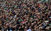 9 June 2019; Spectators look on during the Munster GAA Hurling Senior Championship Round 4 match between Limerick and Clare at the LIT Gaelic Grounds in Limerick. Photo by Diarmuid Greene/Sportsfile