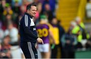 15 June 2019; Wexford manager Davy Fitzgerald before the Leinster GAA Hurling Senior Championship Round 5 match between Wexford and Kilkenny at Innovate Wexford Park in Wexford. Photo by Piaras Ó Mídheach/Sportsfile