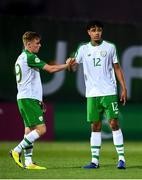 15 July 2019; Brandon Kavanagh, left, and Andrew Omobamidele of Republic of Ireland following the 2019 UEFA European U19 Championships group B match between Norway and Republic of Ireland at FFA Academy Stadium in Yerevan, Armenia. Photo by Stephen McCarthy/Sportsfile