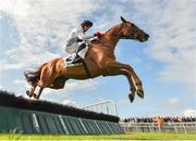 30 July 2019; Road To Dubai, with Keith Donoghue up, jumps the fifth on their way to finishing third in the Colm Quinn BMW Novice Hurdle on Day Two of the Galway Races Summer Festival 2019 in Ballybrit, Galway. Photo by Seb Daly/Sportsfile
