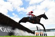 1 August 2019; Dandy Mag, with David Mullins up, jumps the eighth on their way to winning the Guinness Beginners Steeplechase on Day Four of the Galway Races Summer Festival 2019 in Ballybrit, Galway. Photo by Seb Daly/Sportsfile