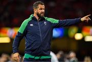 31 August 2019; Ireland defence coach Andy Farrell during the Under Armour Summer Series 2019 match between Wales and Ireland at the Principality Stadium in Cardiff, Wales. Photo by Brendan Moran/Sportsfile