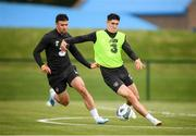 8 September 2019; Callum O'Dowda and Enda Stevens, left, during a Republic of Ireland Squad Training session at FAI National Training Centre in Abbotstown, Dublin. Photo by Stephen McCarthy/Sportsfile