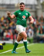 7 September 2019; Dave Kilcoyne of Ireland during the Guinness Summer Series match between Ireland and Wales at Aviva Stadium in Dublin. Photo by David Fitzgerald/Sportsfile