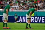 3 October 2019; Jean Kleyn, left, and Tadhg Beirne of Ireland uring the 2019 Rugby World Cup Pool A match between Ireland and Russia at the Kobe Misaki Stadium in Kobe, Japan. Photo by Brendan Moran/Sportsfile