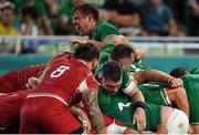 3 October 2019; Jordi Murphy of Ireland, top, reacts as he suffers a rib injury, for which he had to be substituted, dueling a maul in the 2019 Rugby World Cup Pool A match between Ireland and Russia at the Kobe Misaki Stadium in Kobe, Japan. Photo by Brendan Moran/Sportsfile