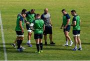 11 October 2019; Ireland squad members, from left, CJ Stander, Rhys Ruddock, Tadhg Furlong, scrum coach Greg Feek, Dave Kilcoyne, and Peter O'Mahony check the state of the pitch during the Ireland Captain's Run at the Fukuoka Hakatanomori Stadium in Fukuoka, Japan. Photo by Brendan Moran/Sportsfile