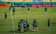 11 October 2019; Ireland squad members, from left, defence coach Andy Farrell, CJ Stander, Rhys Ruddock, Tadhg Furlong, scrum coach Greg Feek, Dave Kilcoyne, Peter O'Mahony and Rob Kearney check the state of the pitch during the Ireland Captain's Run at the Fukuoka Hakatanomori Stadium in Fukuoka, Japan. Photo by Brendan Moran/Sportsfile