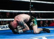11 October 2019; Paddy Barnes after being knocked out by Jay Harris during their IBF inter-continental flyweight title bout at the MTK Fight Night in the Ulster Hall, Belfast. Photo by David Fitzgerald/Sportsfile