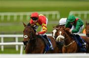 22 October 2019; Patrick Sarsfield, left, with Donnacha O'Brien up, on their way to winning the Flat Rath Maiden during the Curragh Season Finale at the Curragh Racecourse in Kildare. Photo by Seb Daly/Sportsfile