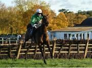 14 November 2019; Burlesque Queen, with James O'Sullivan up, jumps the last on their way to winning the Prior Park Service Station Clonmel Handicap at Clonmel Racecourse in Tipperary. Photo by Matt Browne/Sportsfile