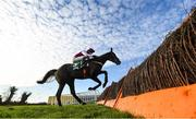 17 November 2019; Awayinthewest, with Danny Mullins up, jump the last during the Frontline Security Grabel Mares Hurdle at Punchestown Racecourse in Naas, Kildare. Photo by David Fitzgerald/Sportsfile