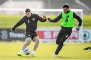 17 November 2019; Seamus Coleman and Troy Parrott during a Republic of Ireland training session at the FAI National Training Centre in Abbotstown, Dublin. Photo by Stephen McCarthy/Sportsfile