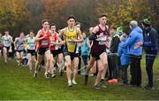 24 November 2019; Darragh McElhinney of U.C.D. A.C., Co. Dublin, centre, and Jamie Battle of Mullingar Harriers A.C., Co. Westmeath, competing in the Junior Men's event during the Irish Life Health National Senior, Junior & Juvenile Even Age Cross Country Championships at the National Sports Campus Abbotstown in Dublin. Photo by Sam Barnes/Sportsfile