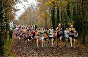 24 November 2019; A general view of the field competing in the U14 Boys event during the Irish Life Health National Senior, Junior & Juvenile Even Age Cross Country Championships at the National Sports Campus Abbotstown in Dublin. Photo by Sam Barnes/Sportsfile