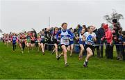 24 November 2019; Sarah Gaffney of West Waterford AC, Co. Waterford, and Kate Morely of Claremorris AC, Co. Mayo, competing in the U12 Girls Event during the Irish Life Health National Senior, Junior & Juvenile Even Age Cross Country Championships at the National Sports Campus Abbotstown in Dublin. Photo by Sam Barnes/Sportsfile
