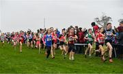 24 November 2019; Runners competing in the U12 Girls Event during the Irish Life Health National Senior, Junior & Juvenile Even Age Cross Country Championships at the National Sports Campus Abbotstown in Dublin. Photo by Sam Barnes/Sportsfile