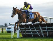 30 November 2019; Party Playboy, with Michael Fogarty up, jumps the last on their way to winning the Christmas Party Race Day December 14th Rated Novice Hurdle on Day One of the Fairyhouse Winter Festival at Fairyhouse Racecourse in Ratoath, Meath. Photo by Harry Murphy/Sportsfile