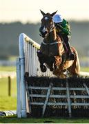 1 December 2019; Janidil, with Mark Walsh up, jumps the last on their way to winning the Download The App BARONERACING.COM Handicap Hurdle on Day 2 of the Fairyhouse Winter Festival at Fairyhouse Racecourse in Meath. Photo by Harry Murphy/Sportsfile