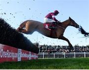 1 December 2019; Samcro, with Jack Kennedy up, jump the last, first time round, during the BARONERACING.COM Drinmore Novice Steeplechase on Day 2 of the Fairyhouse Winter Festival at Fairyhouse Racecourse in Meath. Photo by Harry Murphy/Sportsfile