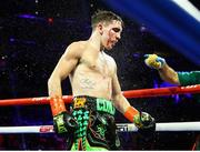 14 December 2019; Michael Conlan during his featherweight bout against Vladimir Nikitin at Madison Square Garden in New York, USA. Photo by Mikey Williams/Top Rank/Sportsfile