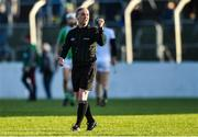 17 November 2019; Referee Seán Cleere during the AIB Leinster GAA Hurling Senior Club Championship semi-final match between St Mullins and Rathdowney Errill at Netwatch Cullen Park in Carlow. Photo by Piaras Ó Mídheach/Sportsfile