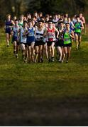 15 December 2019; A general view of the field during the U17 Boys 5000m during the Irish Life Health Novice & Juvenile Uneven XC at Cow Park in Dunboyne, Co. Meath. Photo by Harry Murphy/Sportsfile