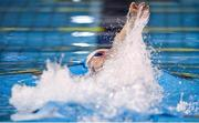 15 December 2019; Shane Ryan competing in the Mens 400m Medley National Exhibition Relay during day four of the Irish Short Course Championships at the National Aquatic Centre in Abbotstown, Dublin. Photo by Eóin Noonan/Sportsfile