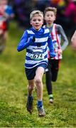 15 December 2019; Colm Mckee of Willowfield Harriers, Co. Down, competing in the U13 Boy's 3500m during the Irish Life Health Novice & Juvenile Uneven XC at Cow Park in Dunboyne, Co. Meath. Photo by Harry Murphy/Sportsfile