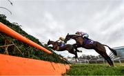 29 December 2019; Brex Drago, with Conor McNamara up, right, and Mindsmadeup, with Adam Short up, jump the last on their first time round during the Tote Supporting Leopardstown Maiden Hurdle during Day Four of the Leopardstown Christmas Festival 2019 at Leopardstown Racecourse in Dublin. Photo by David Fitzgerald/Sportsfile