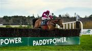 29 December 2019; Battleoverdoyen, with Davy Russell up, clear the last on his way to winning the Neville Hotels Novice Steeplechase during Day Four of the Leopardstown Christmas Festival 2019 at Leopardstown Racecourse in Dublin. Photo by David Fitzgerald/Sportsfile