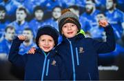 4 January 2020; Leinster supporters Ross Dalton, age 5, left, and Daniel, age 7, from Baltinglass, Co. Wicklow, prior to the Guinness PRO14 Round 10 match between Leinster and Connacht at the RDS Arena in Dublin. Photo by Seb Daly/Sportsfile