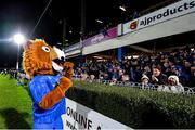 4 January 2020; Leo the Lion during the Guinness PRO14 Round 10 match between Leinster and Connacht at the RDS Arena in Dublin. Photo by Seb Daly/Sportsfile
