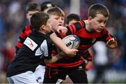 12 January 2020; Action from the Bank of Ireland Half-Time Minis between Longford RFC and Clane Rugby club at the Heineken Champions Cup Pool 1 Round 5 match between Leinster and Lyon at the RDS Arena in Dublin. Photo by David Fitzgerald/Sportsfile
