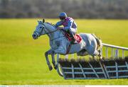 15 January 2020; De Benno, with Trevor Ryan up, jumps the fourth during the Ladbrokes Daily Odds Boosts Handicap Hurdle at Punchestown Racecourse in Kildare. Photo by Harry Murphy/Sportsfile