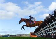 15 January 2020; Gold Des Bois, with Robbie Power up, jumps the sixth during the Ladbrokes Football 'Acca-Boosty' Maiden Hurdle at Punchestown Racecourse in Kildare. Photo by Harry Murphy/Sportsfile