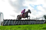 15 January 2020; Column Of Fire, with Davy Russell up, jumps the last, on their way to winning the Ladbrokes Football 'Acca-Boosty' Maiden Hurdle at Punchestown Racecourse in Kildare. Photo by Harry Murphy/Sportsfile