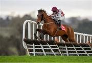 15 January 2020; Toushan, with Phillip Enright up, jumps the ninth during the Ladbrokes Daily Odds Boosts Handicap Hurdle at Punchestown Racecourse in Kildare. Photo by Harry Murphy/Sportsfile