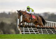 15 January 2020; The Church Gate, with Oakley Brown up, jumps the ninth during the Ladbrokes Daily Odds Boosts Handicap Hurdle at Punchestown Racecourse in Kildare. Photo by Harry Murphy/Sportsfile